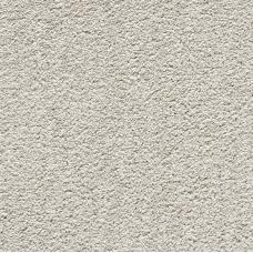 Soft Noble Grey Mare (Saxony)